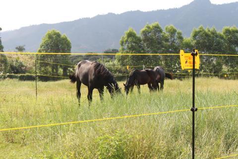 文山云南牧场安装案例图片
